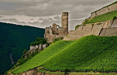 Poster featuring the photograph Rhine River Medieval Castle by Kirsten Giving