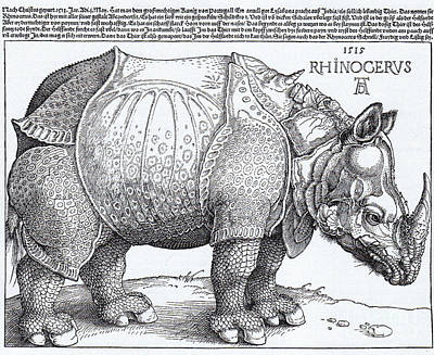 Rhinoceros - Woodcut Poster by Pg Reproductions