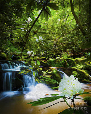 Rhododendron Trail Waterfalls Poster