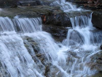 Ricketts Glen Waterfall 3897 Poster by David Dehner