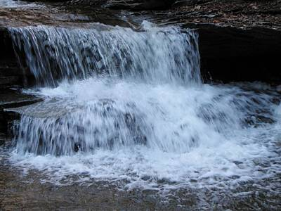Ricketts Glen Waterfall 3935 Poster by David Dehner