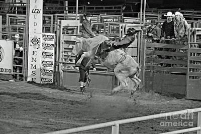 Ride 'em Cowboy Poster by Shawn Naranjo