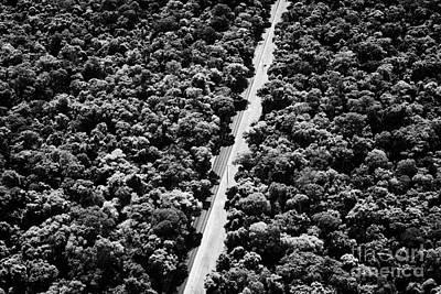 Road Through Brazilian Sub Tropical Rain Forest Iguacu Parana Brazil South America Poster
