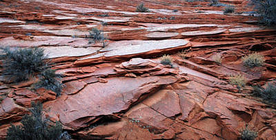 Rocks At Zion National Park Poster
