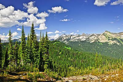Rocky Mountain View From Mount Revelstoke Poster by Elena Elisseeva