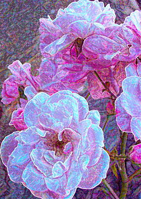 Rose 94 Poster