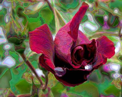 Rose Emerging Poster