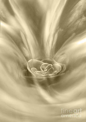 Poster featuring the digital art Rose From A Dream by Johnny Hildingsson