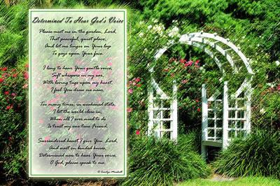 Rose Garden Poster by Carolyn Marshall