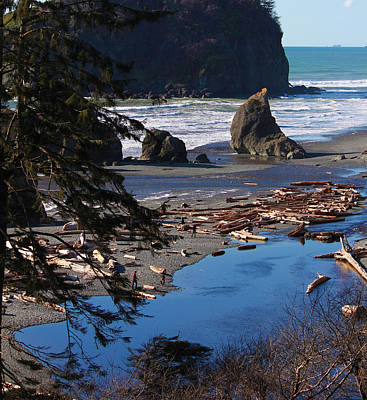 Ruby Beach IIi Poster by Jeanette C Landstrom