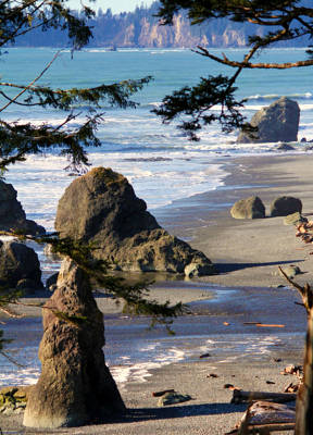 Ruby Beach Iv Poster by Jeanette C Landstrom