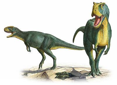 Rugops Primus, A Prehistoric Era Poster