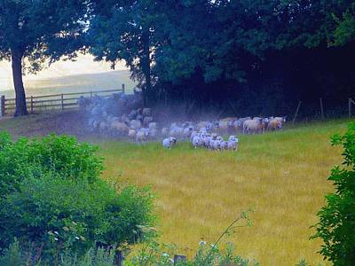 Poster featuring the photograph Running Of The Sheep by Rdr Creative