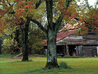 Rural Barn Fall South Carolina Landscape Poster by Kathy Fornal