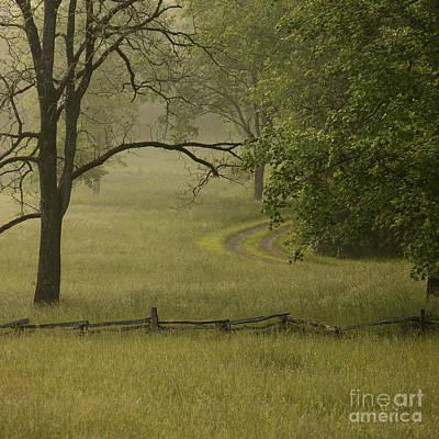 Rural Lane In Morning Fog Poster