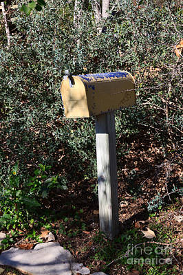 Rural Mailbox With Fading Yellow And Blue Paint Poster by Louise Heusinkveld