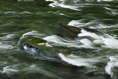 Rushing River  Poster by John Greim