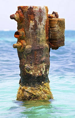 Rusted Dock Pier Of The Caribbean II Poster by David Letts