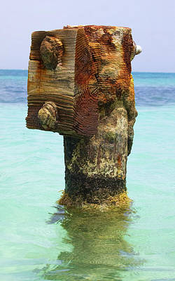 Rusted Dock Pier Of The Caribbean IIi Poster
