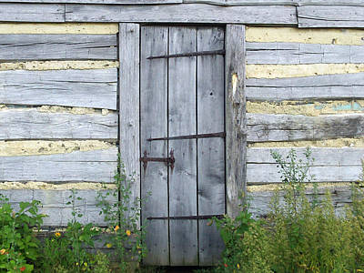 Rustic Door Poster