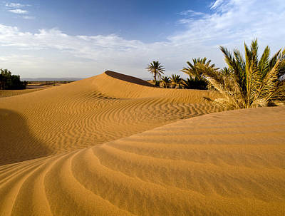 Sahara Desert At M'hamid, Morocco, Africa Poster by Ben Pipe Photography