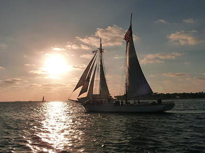 Poster featuring the photograph Sailboat At Key West by Jo Sheehan