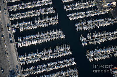 Sailboats At Wharf Poster by Sami Sarkis