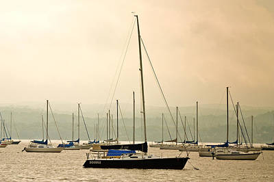 Sailboats Moored In The Harbor Poster