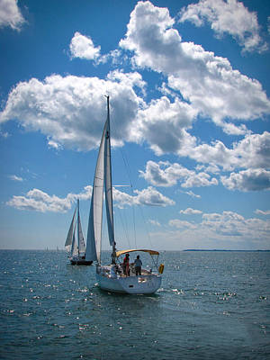 Poster featuring the photograph Sailing by Cindy Haggerty