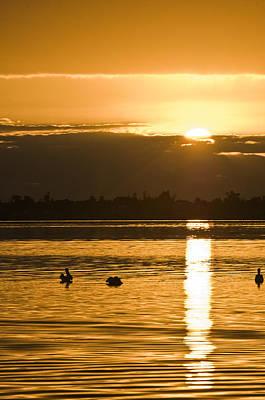 Saint Lucie River Sunrise Poster by Patrick M Lynch