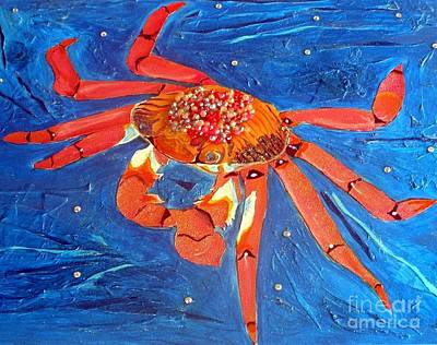 Sally Lightfoot Crab Poster by Rossana Kelton
