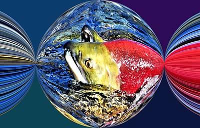 Salmon Party Popper Poster by Don Mann