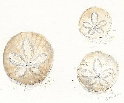 Sand Dollar Trio Watercolor Poster by Sheryl Heatherly Hawkins