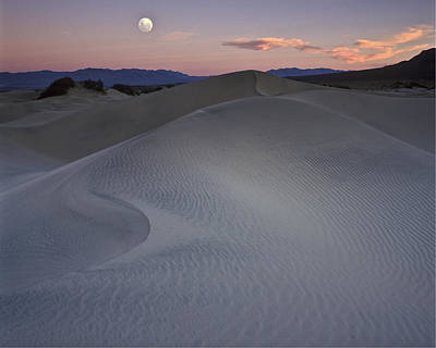 Sand Dune And Moon Death Valley Poster