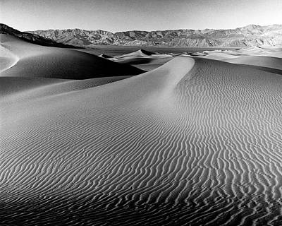 Sand Dune-death Valley Poster