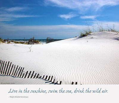 Sand Dunes Dream 3 Poster by Marie Hicks
