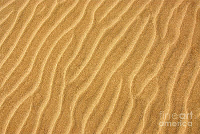 Sand Ripples Abstract Poster