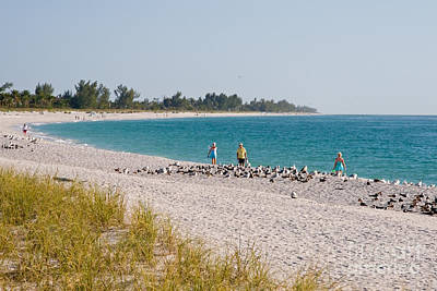 Sanibel Island Florida Summer Beach Poster by ELITE IMAGE photography By Chad McDermott
