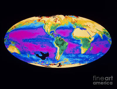 Satellite Image Of The Earths Biosphere Poster by Dr. Gene Feldman, NASA Goddard Space Flight Center