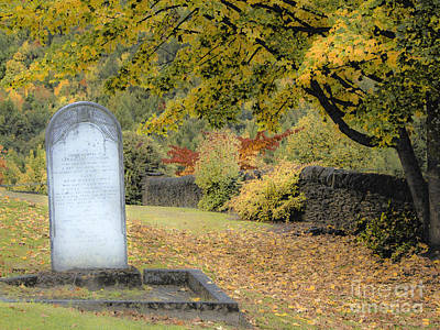 Scenic Resting Place Poster by Karen Lewis