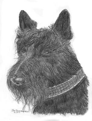 Poster featuring the drawing Scottish Terrier by Jim Hubbard