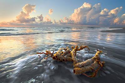 Sea Jewel Poster by Debra and Dave Vanderlaan