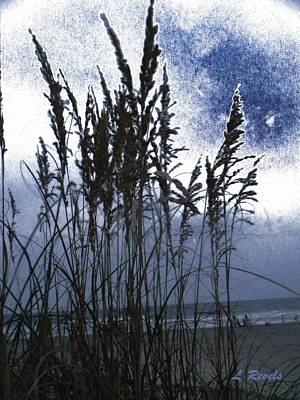 Sea Oats On Tybee Poster by Leslie Revels Andrews
