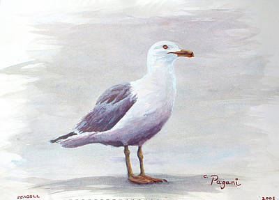 Poster featuring the painting Seagull by Chriss Pagani