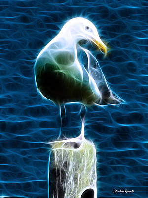 Seagull Poster by Stephen Younts