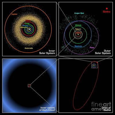 Sednas Orbit Poster by NASA / JPL-Caltech