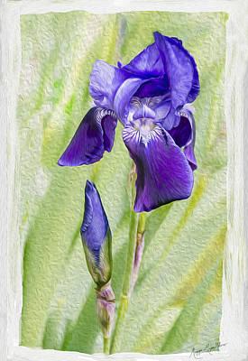 Seeing Purple Poster