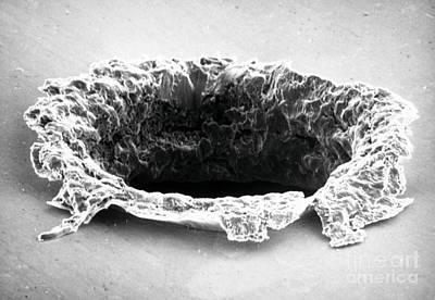 Sem Of Impact Crater On Solar Maximum Poster