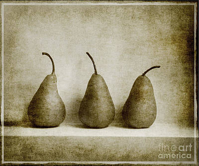 Sepia Pears Poster by Linde Townsend