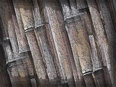 Shades Of Bamboo Poster